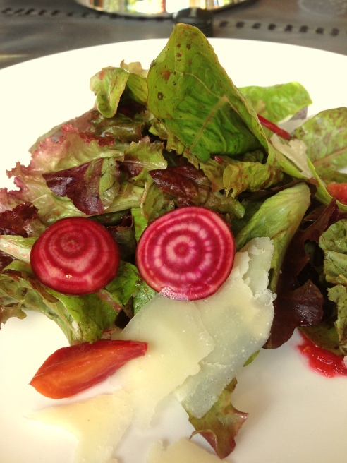 Some of the Ingredients for the Candy Stripe Beet Salad were Growing within View