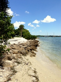 Water's Edge at Sarasota Bay